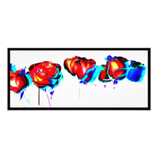 Foto vibrante de los rosas