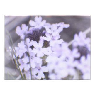 Foto Wildflowers púrpuras de la primavera