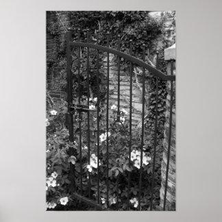 Fotografía blanco y negro de las vides de la póster