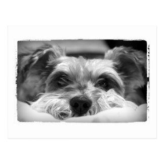 fotografía blanco y negro del aza postal