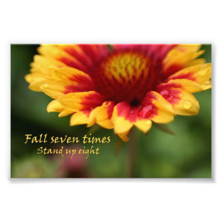 Fotografía colorida de la flor de la cita foto