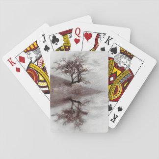 Fotografía de la bella arte del árbol barajas de cartas