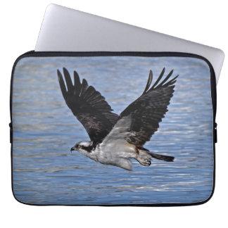 Fotografía de la naturaleza de Eagle de pez volado Fundas Computadoras