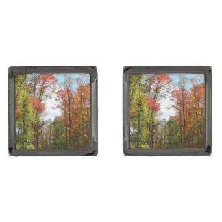 Fotografía de la naturaleza del otoño de los gemelos metalizados