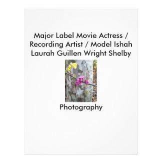 Fotografía de Laura Guillen aka Ishah de la actriz Folleto 21,6 X 28 Cm