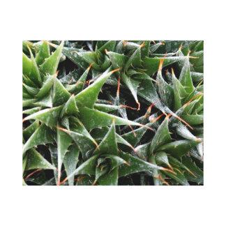 Fotografía decorativa de las flores verdes de los impresión en lienzo