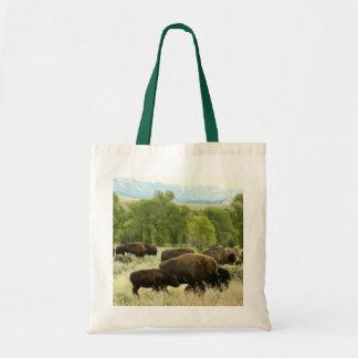 Fotografía del animal de la naturaleza del bisonte