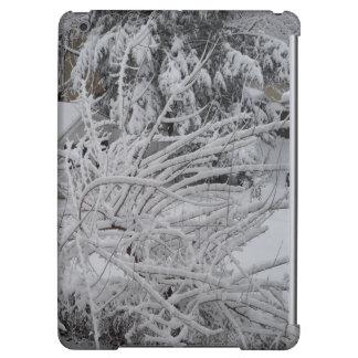 fotografía del invierno del caso del ipad