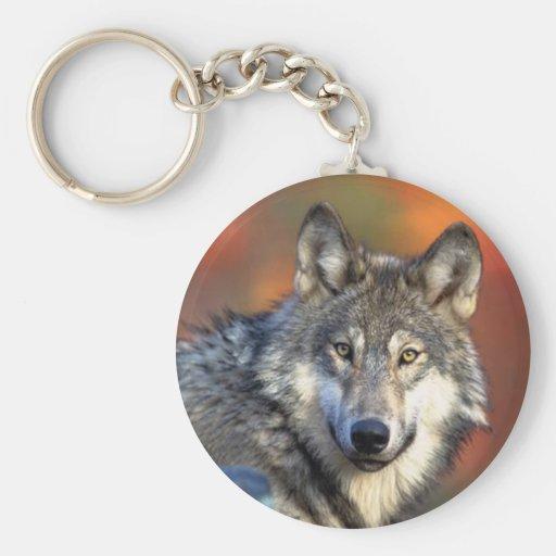 Fotografía del lobo llavero