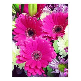 Fotografía floral rosada de Ishah Tarjeta Postal