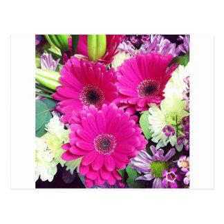 Fotografía floral rosada de Ishah Tarjetas Postales