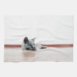 Fotografía LINDA ESTUPENDA del retrato del gatito Toalla De Cocina