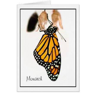 Fotografía recién nacida de la mariposa de monarca tarjetón
