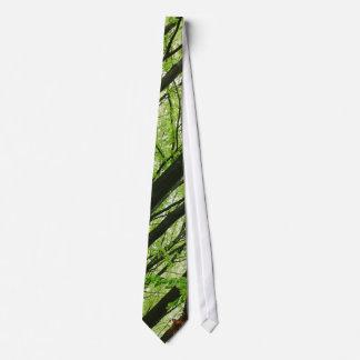 Fotografía verde del bosque, paisaje de la natural corbatas
