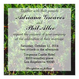 Fotografía verde del primer del musgo invitación 13,3 cm x 13,3cm