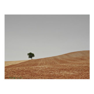 fotografias del Camino de Santiago Postales