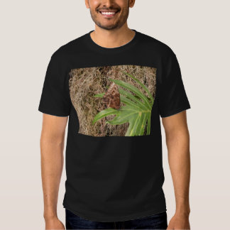 Fotos de la mariposa camisetas
