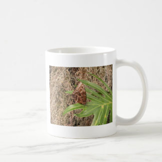 Fotos de la mariposa taza clásica