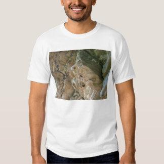 fotos de la roca camisas