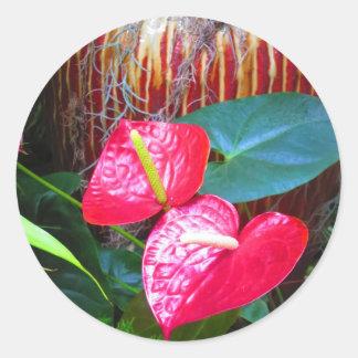 Fotos florales de la flor de los jardines de pegatina redonda
