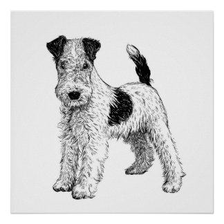 Fox terrier del arte del poster/de la pared del
