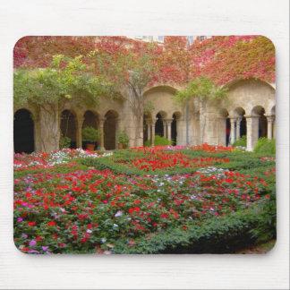 Francia, St. Remy de Provence, claustros en 3 Alfombrilla De Ratón