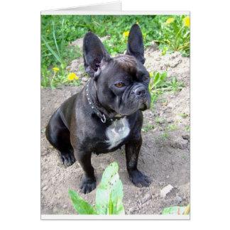 french-bulldog-sitting.png tarjeta de felicitación