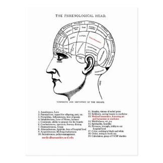 Frenología médica de la humanidad tarjetas postales