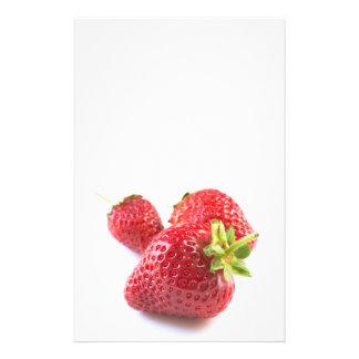Fresas Folleto 14 X 21,6 Cm