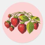Fresas frescas pegatinas redondas