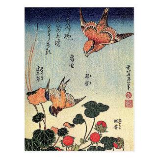 Fresas salvajes y pájaros postal