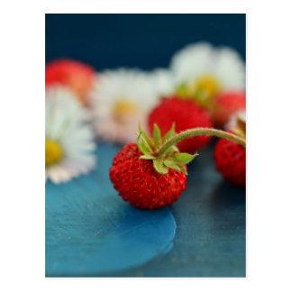 fresas postal