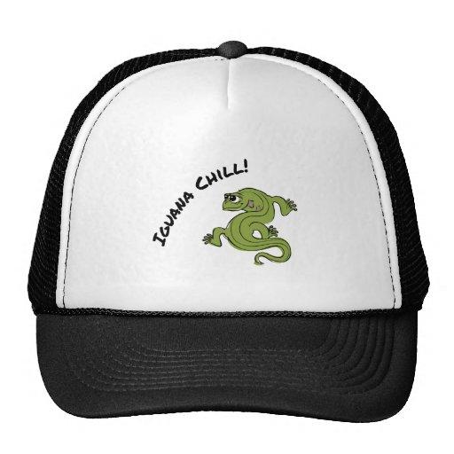 Frialdad de la iguana gorro