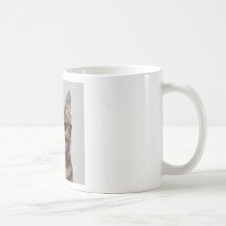 Friki del gato taza de café