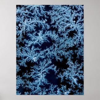 Frost modela el primer, California Póster