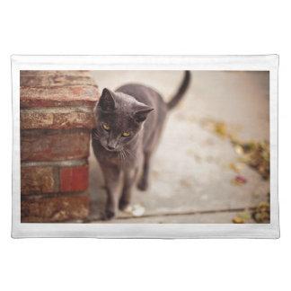 Frotaciones del gato negro contra una pared de salvamanteles