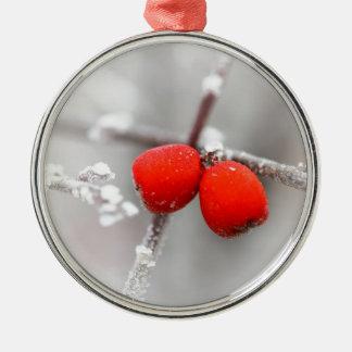 Fruta congelada ornamento para reyes magos