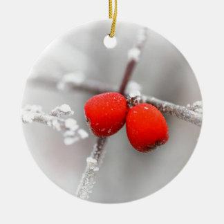Fruta congelada ornamentos de reyes magos