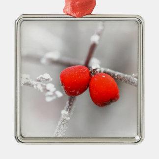 Fruta congelada ornamento de navidad