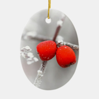 Fruta congelada ornato