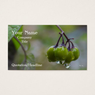 Fruta de la claridad tarjeta de visita