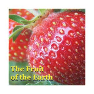 Fruta de la tierra lienzo