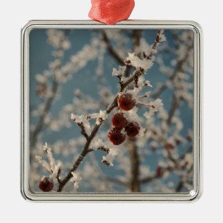 Fruta del invierno adorno cuadrado plateado