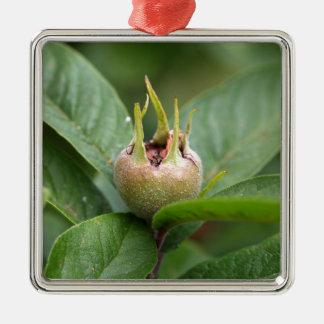 Fruta del níspero común adorno de cerámica