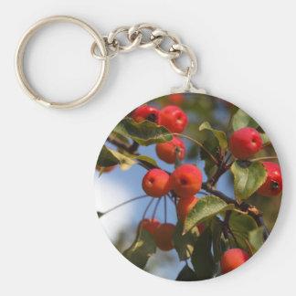 Frutas de un manzano salvaje llavero