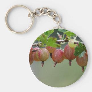 Frutas de una grosella espinosa llavero