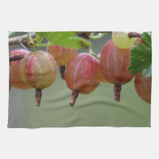 Frutas de una grosella espinosa paño de cocina