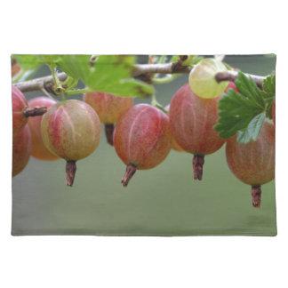 Frutas de una grosella espinosa salvamanteles