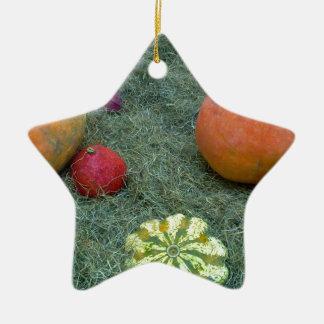 frutas del otoño de la caída de la calabaza adorno de cerámica en forma de estrella