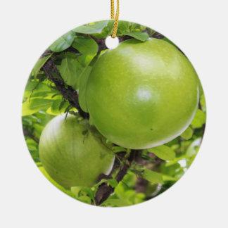 Frutas exóticas de Maja Adorno Redondo De Cerámica